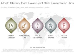 ppts_month_stability_data_powerpoint_slide_presentation_tips_Slide01