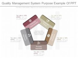 Ppts Quality Management System Purpose Example Of Ppt