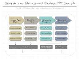 Ppts Sales Account Management Strategy Ppt Example
