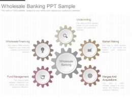 Ppts Wholesale Banking Ppt Sample