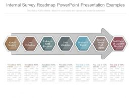 Pptx Internal Survey Roadmap Powerpoint Presentation Examples