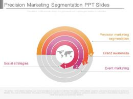 Pptx Precision Marketing Segmentation Ppt Slides