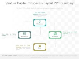Pptx Venture Capital Prospectus Layout Ppt Summary