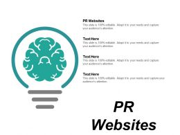 Pr Websites Ppt Powerpoint Presentation Gallery Files Cpb