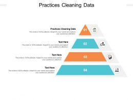 Practices Cleaning Data Ppt Powerpoint Presentation Summary Example Introduction Cpb