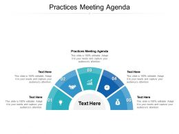 Practices Meeting Agenda Ppt Powerpoint Presentation Gallery Example File Cpb