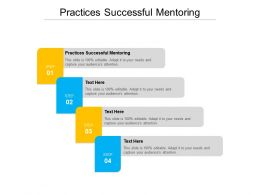 Practices Successful Mentoring Ppt Powerpoint Presentation Gallery Examples Cpb