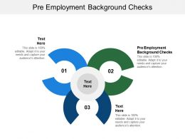 Pre Employment Background Checks Ppt Powerpoint Presentation Summary Example Cpb