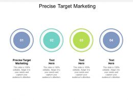 Precise Target Marketing Ppt Powerpoint Presentation Slides Deck Cpb