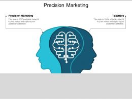 Precision Marketing Ppt Powerpoint Presentation Infographics Skills Cpb