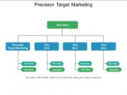 Precision Target Marketing Ppt Powerpoint Presentation Icon Gallery Cpb