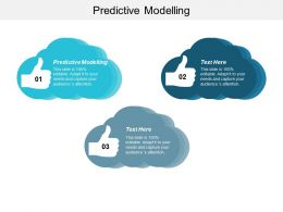 Predictive Modelling Ppt Powerpoint Presentation Summary Show Cpb