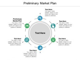 Preliminary Market Plan Ppt Powerpoint Presentation Infographic Template Example Cpb
