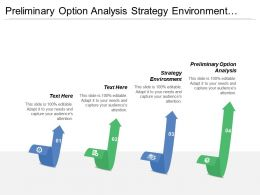 Preliminary Option Analysis Strategy Environment Cost Saving Business Opportunity