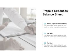 Prepaid Expenses Balance Sheet Ppt Powerpoint Presentation Infographics Good Cpb