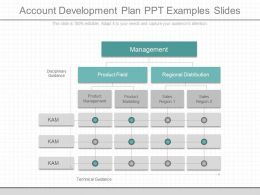 Present Account Development Plan Ppt Examples Slides