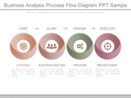 Present Business Analysis Process Flow Diagram Ppt Sample