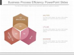 Present Business Process Efficiency Powerpoint Slides