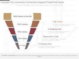 Present Example Of E Commerce Conversion Diagram Powerpoint Ideas