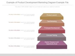 Present Example Of Product Development Marketing Diagram Example File