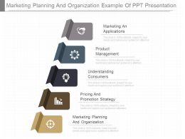 Present Marketing Planning And Organization Example Of Ppt Presentation