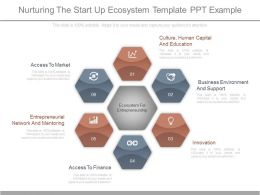 Present Nurturing The Start Up Ecosystem Template Ppt Example