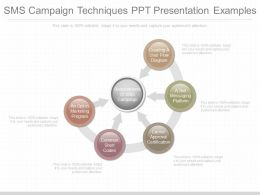 Present Sms Campaign Techniques Ppt Presentation Examples