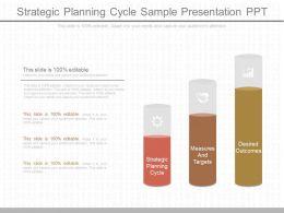 Present Strategic Planning Cycle Sample Presentation Ppt