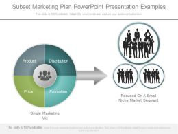 Present Subset Marketing Plan Powerpoint Presentation Examples