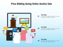 Price Bidding During Online Auction Sale