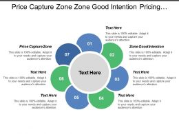 Price Capture Zone Zone Good Intention Pricing Maturity Level