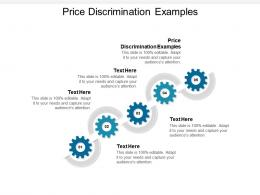 Price Discrimination Examples Ppt Powerpoint Presentation Slides Visuals Cpb