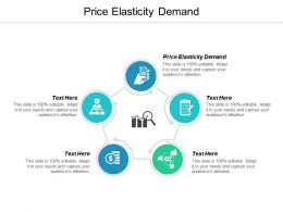 Price Elasticity Demand Ppt Powerpoint Presentation Icon Skills Cpb