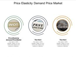 Price Elasticity Demand Price Market Ppt Powerpoint Presentation File Background Cpb