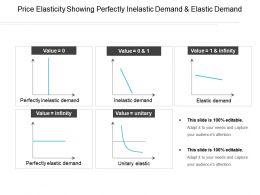 Price Elasticity Showing Perfectly Inelastic Demand And Elastic Demand