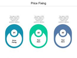 Price Fixing Ppt Powerpoint Presentation Icon Infographic Template Cpb