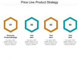 Price Line Product Strategy Ppt Powerpoint Presentation Pictures Layouts Cpb