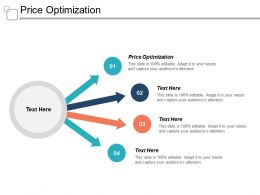 Price Optimization Ppt Powerpoint Presentation Gallery Guidelines Cpb