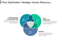 Price Optimization Strategic Human Resource Planning Business Research Cpb