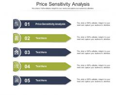 Price Sensitivity Analysis Ppt Powerpoint Presentation Model Infographics Cpb