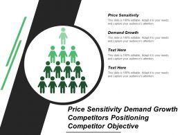 Price Sensitivity Demand Growth Competitors Positioning Competitor Objective