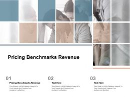 Pricing Benchmarks Revenue Ppt Powerpoint Presentation Professional Grid Cpb