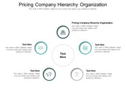 Pricing Company Hierarchy Organization Ppt Powerpoint Presentation Professional Rules Cpb