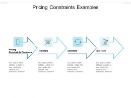 Pricing Constraints Examples Ppt Powerpoint Presentation Pictures Example Topics Cpb