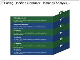 Pricing Decision Nonlinear Demands Analysis Competition Marketing Budget