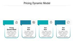 Pricing Dynamic Model Ppt Powerpoint Presentation Portfolio Templates Cpb