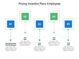 Pricing Incentive Plans Employees Ppt Powerpoint Presentation Visual Aids Cpb