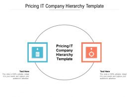 Pricing IT Company Hierarchy Template Ppt Powerpoint Presentation Pictures Outline Cpb