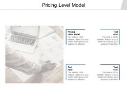 Pricing Level Model Ppt Powerpoint Presentation Professional Slide Cpb