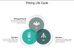 Pricing Life Cycle Ppt Powerpoint Presentation Portfolio Slides Cpb